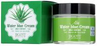 Крем увлажняющий с экстрактом алоэ JIGOTT Aloe Water Blue Cream 70мл: фото