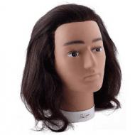 Голова учебная мужская Sibel BOBBY (натуральные волосы, 20-25см): фото